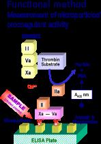 zymuphen-img-II
